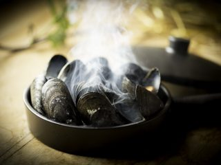 Quebec mussels lightly smoked in juniper with pine roasted zucchini